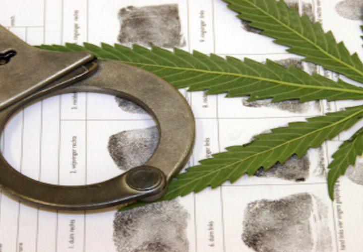 marijuana-lawyer-in-new-orleans-1200x531
